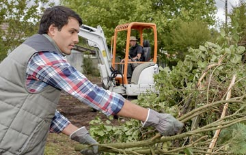 typical services by South Yorkshire tree surgeons