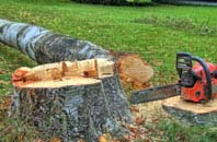 free South Yorkshire tree felling quotes
