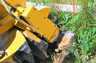 South Yorkshire tree stump grinding services